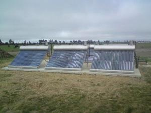 Solar solutions for the dairy shed Image ©