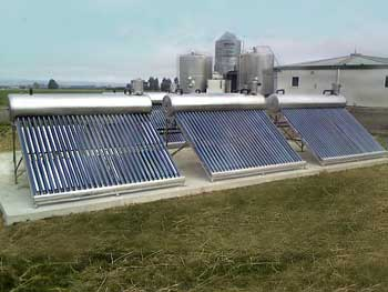 Solar Water Heating For Dairy
